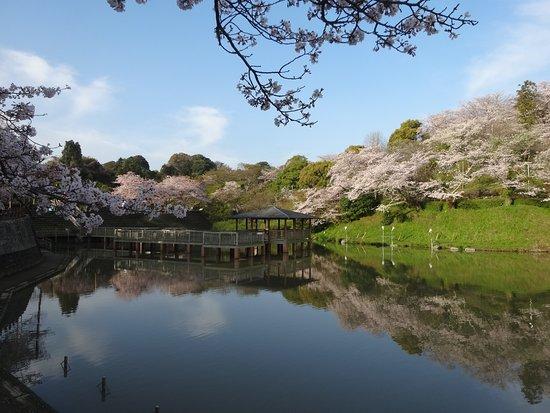 Shimizu Funakoshi Tsutsumi Park