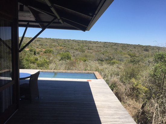 Kwandwe Private Game Reserve, South Africa: Great memories.