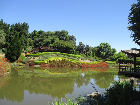 Pokolbin, Australia: The Asian Garden