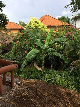 Sari Beach Hotel: photo4.jpg