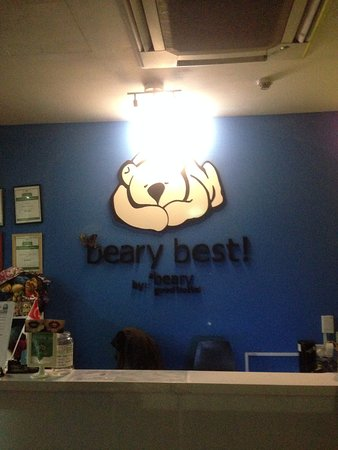 Beary Best! by a Beary Good Hostel!: the reception