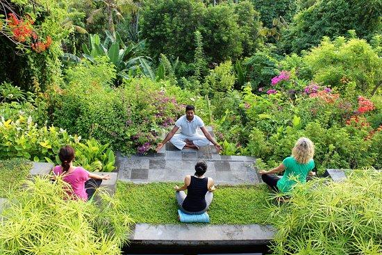 Zen Resort Bali: Morning Meditation