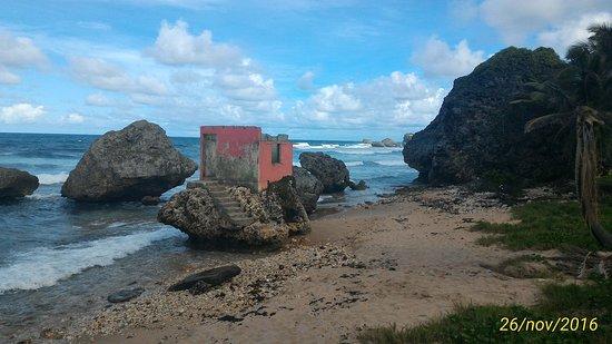 Bathsheba, Barbados: P_20161126_140811_1_p_large.jpg