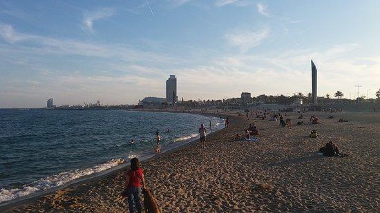 Nova Mar Bella - Picture of Nova Mar Bella Beach, Barcelona - TripAdvisor