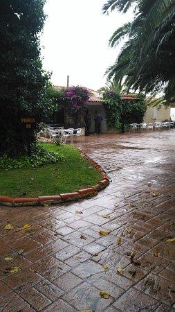 San Antonio de Benageber, Spanyol: Restaurante Hípica Mas Ferrat