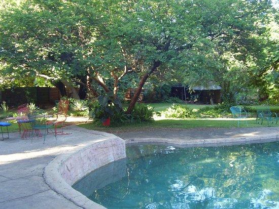 Shoestrings Backpackers Lodge: Swimmingpoolen.