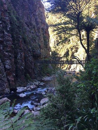 Waihi, Nueva Zelanda: Karangahake Gorge