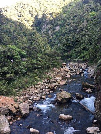 Waihi, Nieuw-Zeeland: Karangahake Gorge