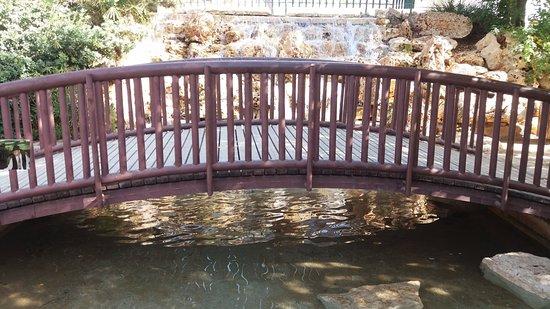 Japanese Garden: Still nice and green corner