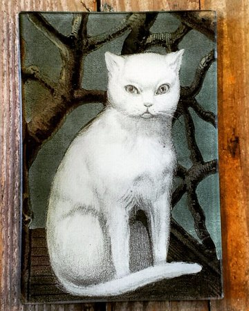 Washington, VA: John Derian decoupage glass Cat Tray at Ballard's.