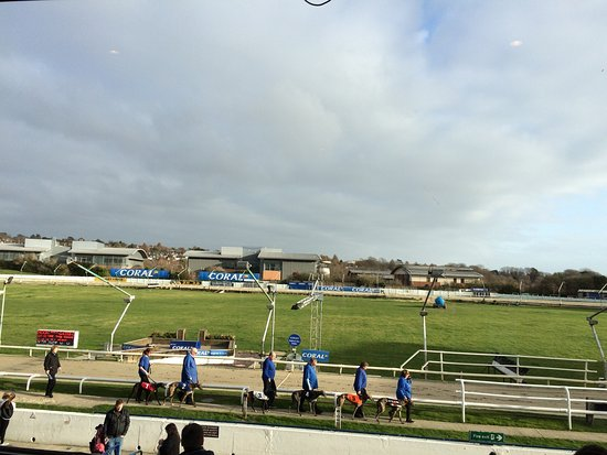 Coral, Brighton & Hove Greyhound Stadium: photo0.jpg
