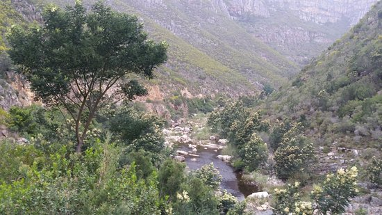 Overberg District, South Africa: Stream