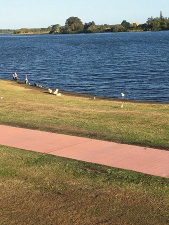 Taree, Australia: This is the view from the rowing club !!! Beautiful!!!