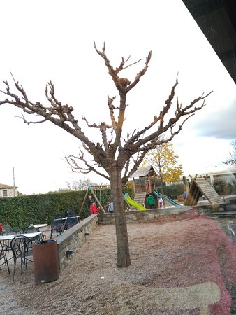 Sant Ferriol, Spanje: TA_IMG_20161127_150322_large.jpg