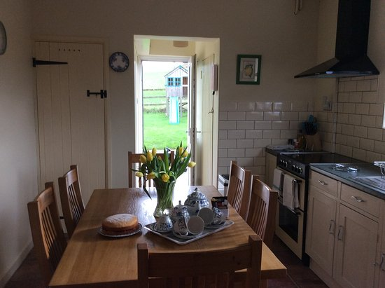 Castle Cary, UK: From the kitchen to the play house/slide, Lone Oak