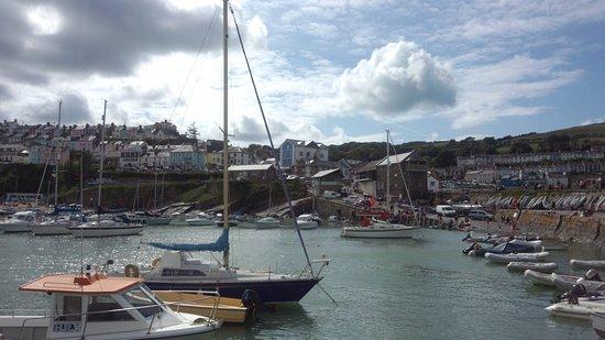 New Quay, UK: 船乗り場