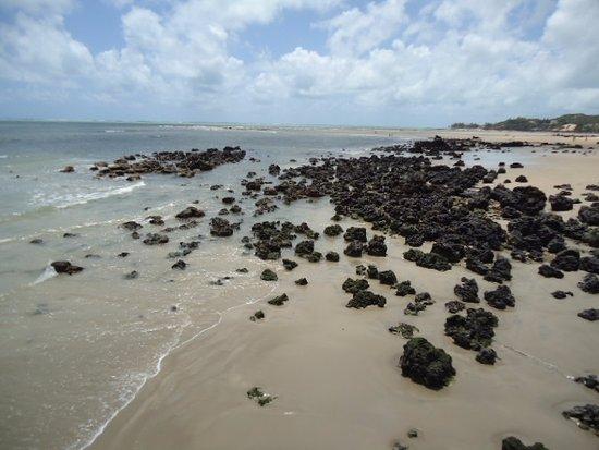 Pirangi do Norte beach: Pedras