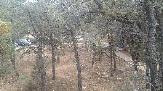 Yavapai Lodge Foto