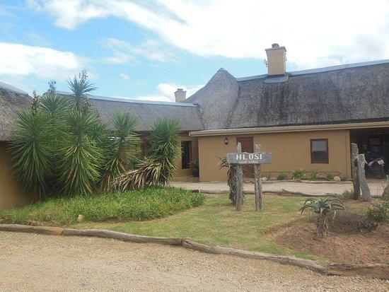 Amakhala Game Reserve, Güney Afrika: FB_IMG_1480261571457_large.jpg