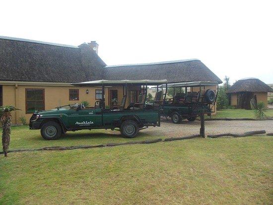 Amakhala Game Reserve, แอฟริกาใต้: FB_IMG_1480261594519_large.jpg