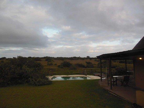 Amakhala Game Reserve, แอฟริกาใต้: FB_IMG_1480261607738_large.jpg
