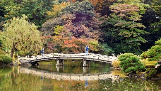 Shinjuku Gyoen National Garden: Bridge In Japanese Garden