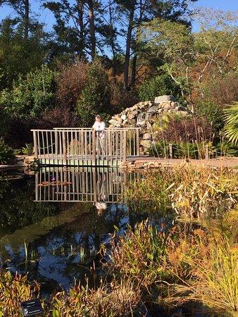 Picture Of Coastal Georgia Botanical Gardens