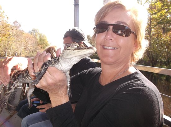 LaPlace, LA: Handling a gator at Cajun Pride Swamp Tours