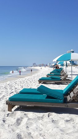 Perdido Beach Resort Has Great Service Here S A View From Under Our Umbrella