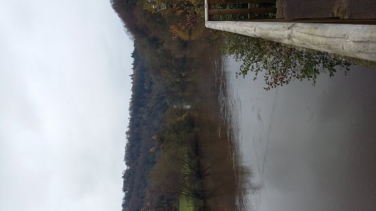 Symonds Yat, UK: 20161120_133513_large.jpg