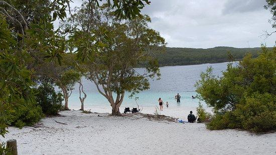 Херви-Бей, Австралия: Beautiful Fraser Island