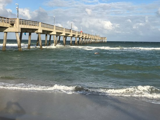 Dania beach fishing pier all you need to know before you for Dania beach fishing pier