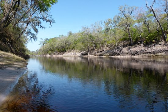 ‪‪Suwannee Valley Campground‬: The Suwannee River - one of the campsite boundaries‬