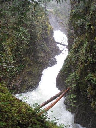 Little Qualicum Falls Provincial Park: Upper Falls at Little Qualicum Falls Park