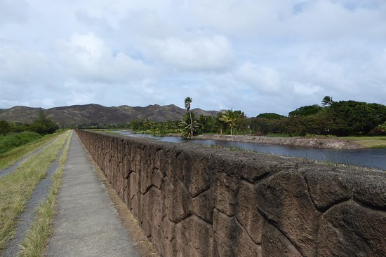 Kawai Nui Marsh: Trail goes straight and flat alongside a wall.