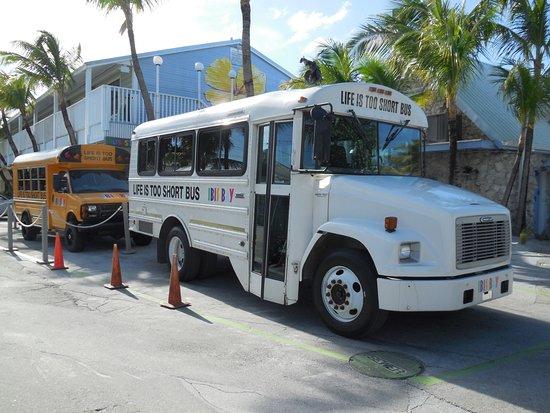 إيبيس باي بيتش ريزورت: Hotelshuttle nach Key West