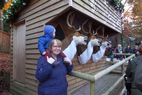 Penrith, UK: Singing Reindeer