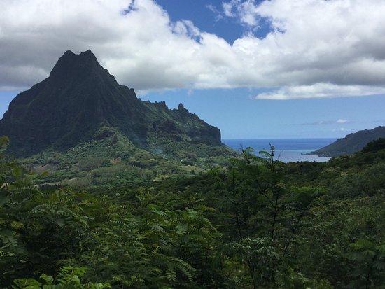 Moorea, Franska Polynesien: Baie de cook derrière le mont