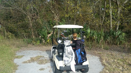 Country Club Of Silver Springs Shores