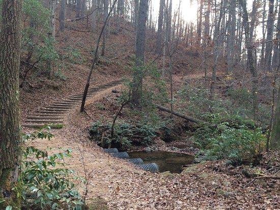 Dahlonega, GA: Lake Zwerner Trail