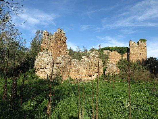Necropoli Rupestri di San Giovenale e Terrone