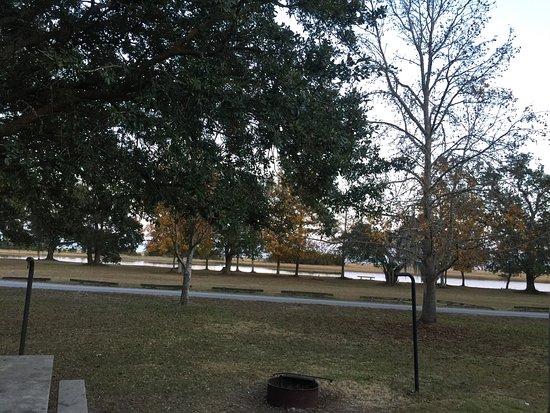 McClellanville, SC: photo0.jpg