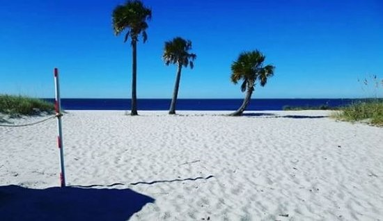 Sunset Beach Fred Howard Park Tarpon Springs Florida