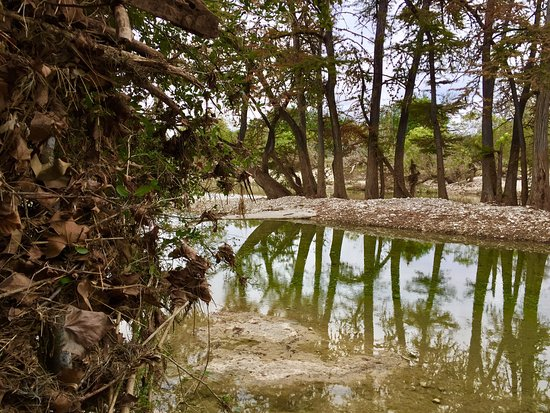 Picture of river haven cabins rio frio for Cabins along the frio river