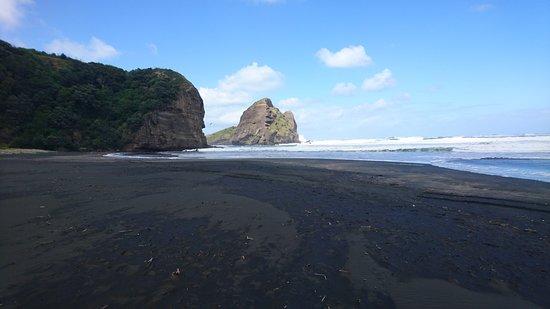 Piha, New Zealand: DSC_0535_large.jpg