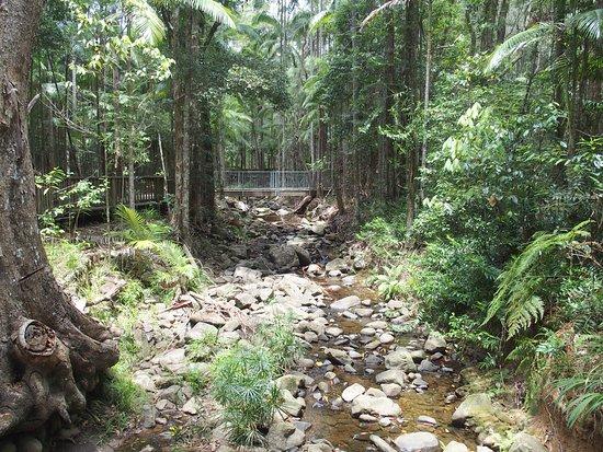 Buderim, Australien: Dry Creek bed crossing on Forest Walk