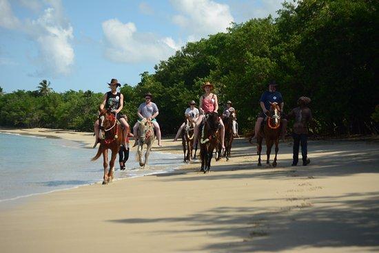 Buccoo, Tobago: Group on the beach