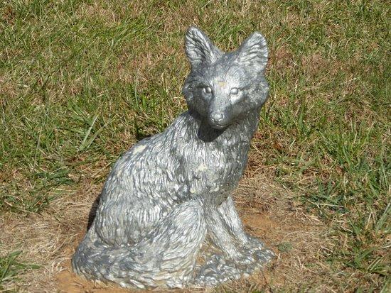 Linden, VA: Fox