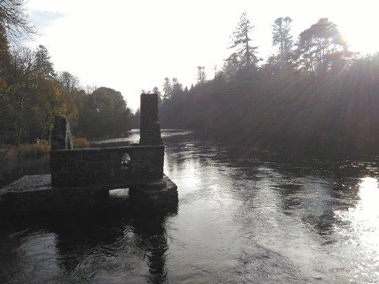 กอง, ไอร์แลนด์: Monk's fishing