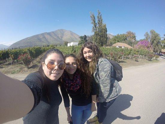 Santa Rita Winery: Tour a la Viña
